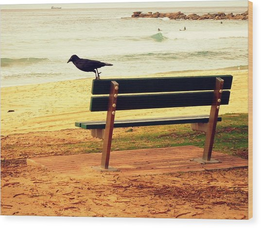 The Bench And The Blackbird Wood Print
