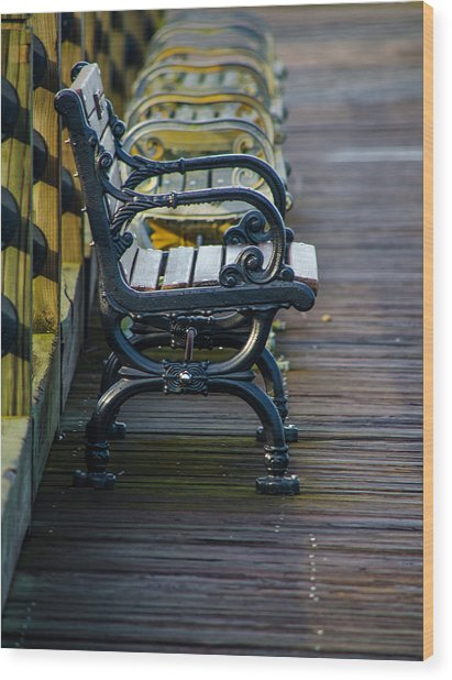 The Bench Wood Print