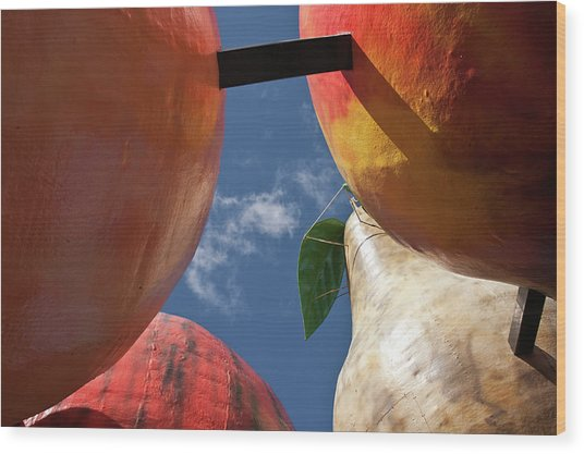 The Big Fruit Wood Print