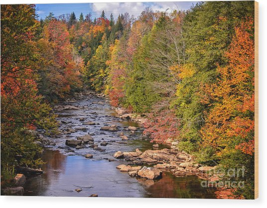 The Blackwater River In Autumn Color Wood Print