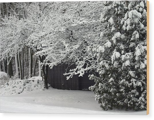 The Blizzard Is Over Wood Print by Jack G  Brauer