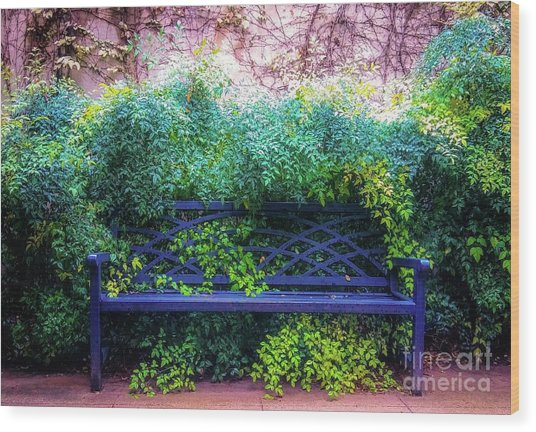The Blue Park Bench Wood Print