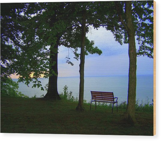 The Bluffs Bench Wood Print