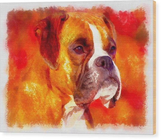 The Boxer Wood Print