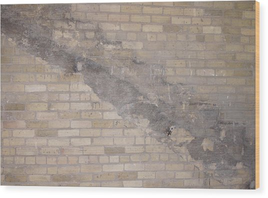 The Brick Wall-2 Wood Print by Janis Beauchamp
