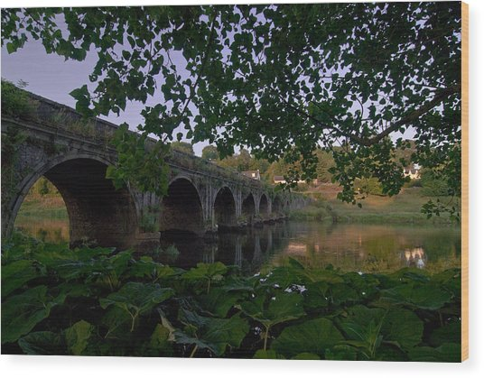 The Bridge At Inistogue Wood Print by Joe Houghton