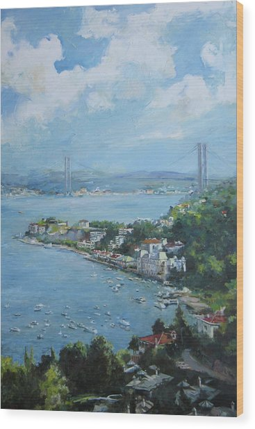 The Bridge Over Bosphorus Wood Print