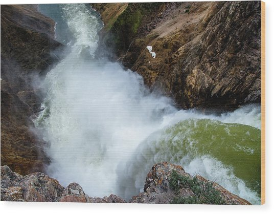 The Brink Of The Lower Falls Of The Yellowstone River Wood Print