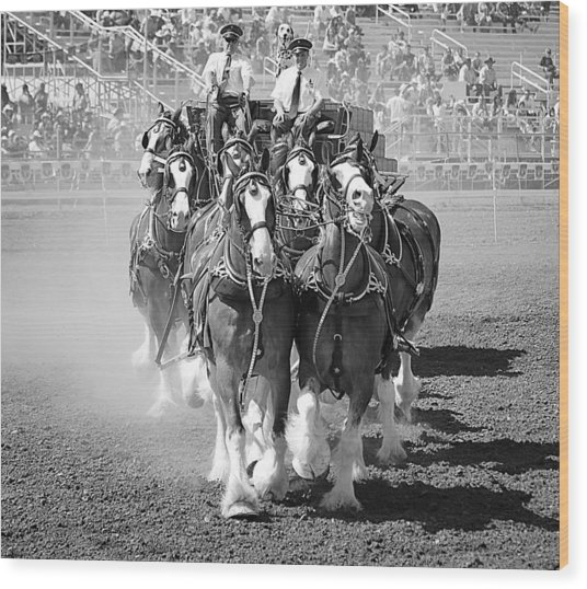 The Budweiser Clydesdales Wood Print