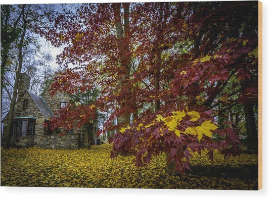 The Cabin In Autumn Wood Print