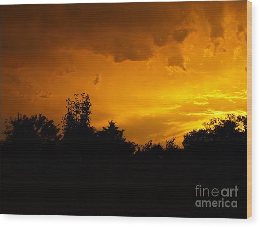 The Calm Before The Storm Wood Print by Gail Finger