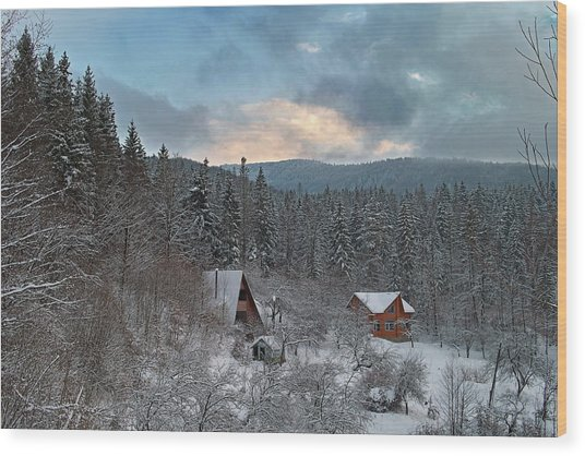Wood Print featuring the photograph The Carpathian Chalet. Sheshory, 2010. by Andriy Maykovskyi