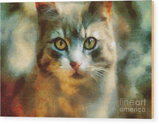 The Cat Eyes Wood Print