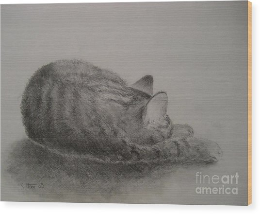 The Cat Series II Wood Print by Sabina Haas