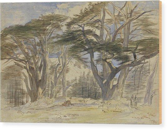 The Cedars Of Lebanon Wood Print