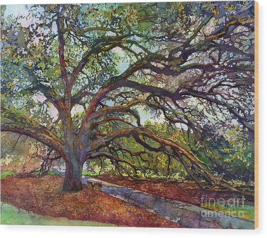 The Century Oak Wood Print