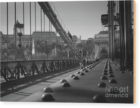 The Chain Bridge, Danube Budapest Wood Print