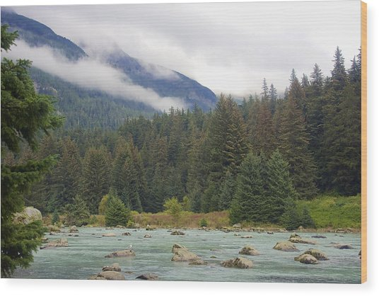 The Chillkoot River 2 Wood Print