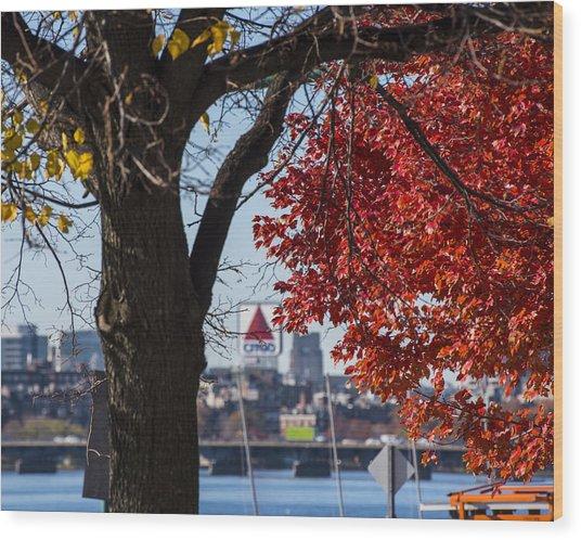 The Citgo Sign Through The Trees Boston Ma Charles River Wood Print