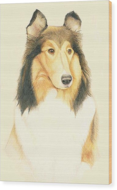 The Collie Wood Print