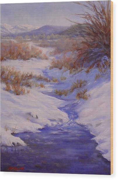 The Color Of Winter Wood Print by Debra Mickelson