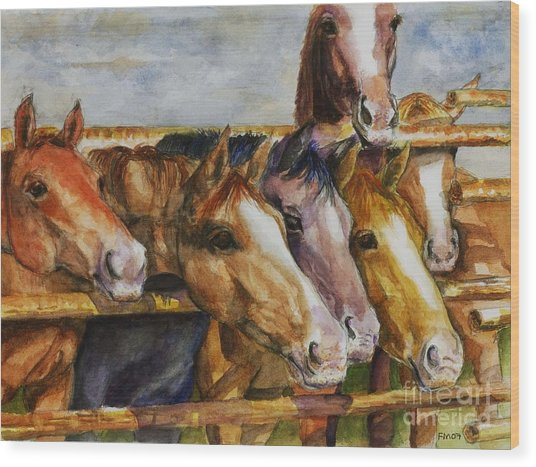 The Colorado Horse Rescue Wood Print
