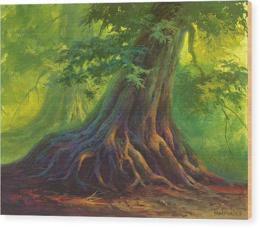 The Colors Of Light Wood Print