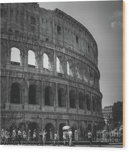 The Colosseum, Rome Italy Wood Print