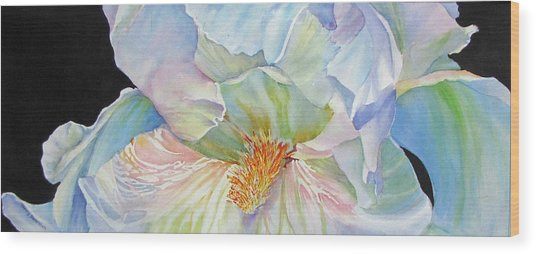 The-colours-of-white Wood Print by Nancy Newman