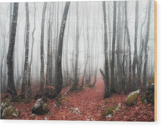 The Corridor Wood Print