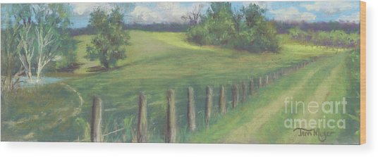 The Cow Path To The Pond Wood Print by Terri  Meyer