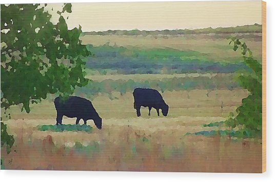 The Cows Next Door Wood Print