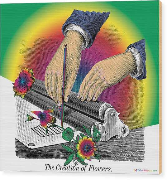 The Creation Of Flowers Wood Print