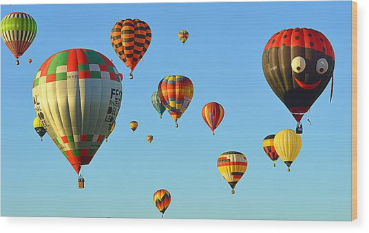 Wood Print featuring the photograph The Crowded Skies by AJ Schibig