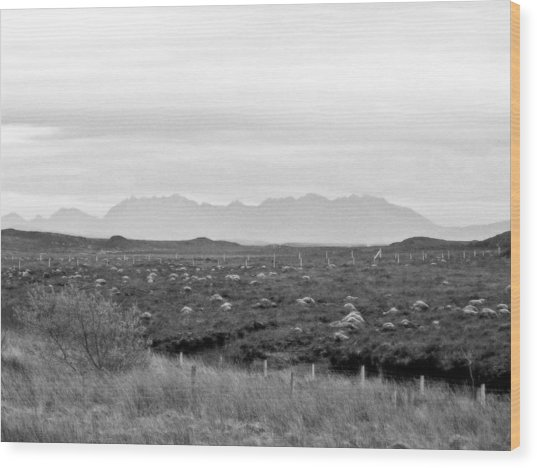 The Cuillin Wood Print by Dan Andersson
