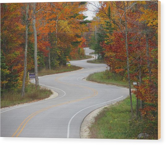 The Curvy Road Wood Print