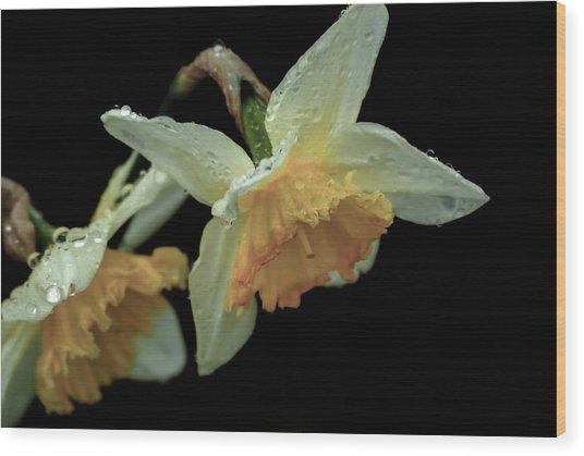 The Daffodil Wood Print