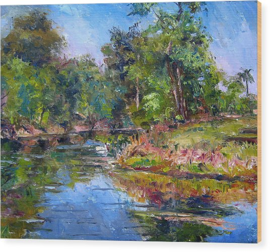 The Davie Canal Wood Print by Mark Hartung