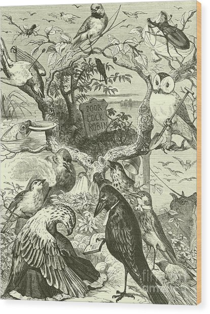 The Death And Burial Of Cock Robin Wood Print