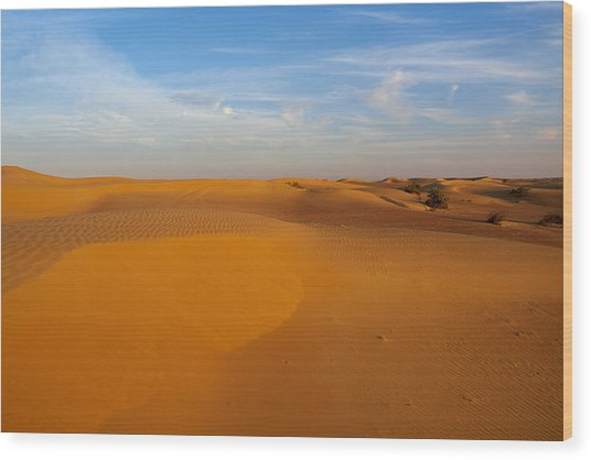The Desert  Wood Print