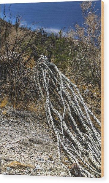 The Desert Sentinel Wood Print