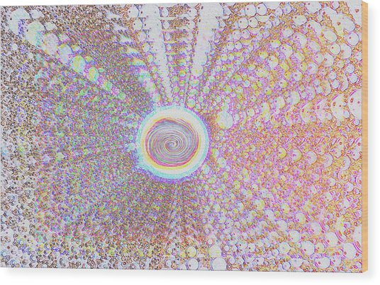 The Divine Light   Wood Print