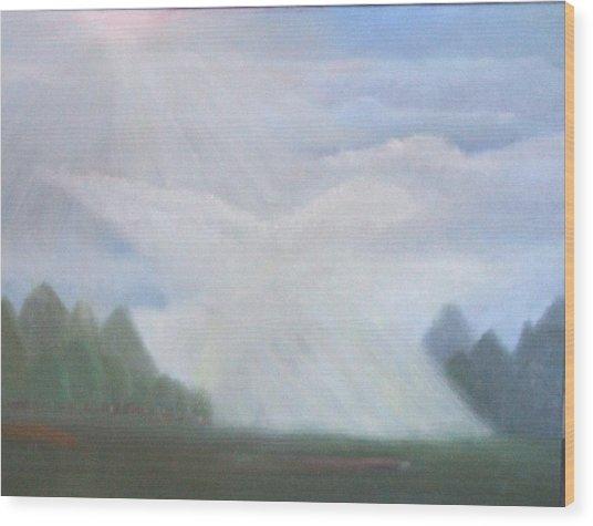 The Dove Cloud Wood Print by Rana Adamchick