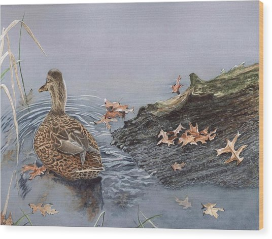 The Duck And The Alligator Wood Print