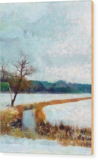 Wood Print featuring the painting The Dyke by Valerie Anne Kelly