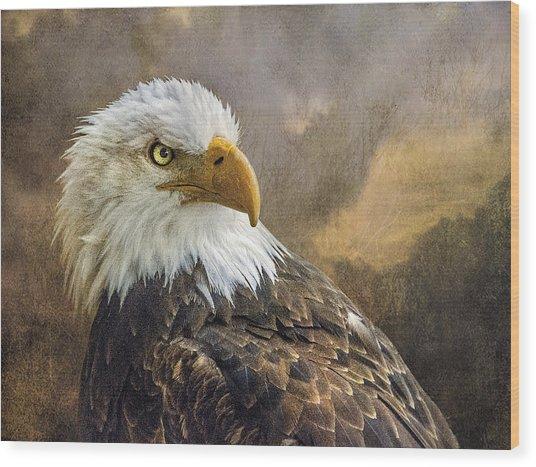 The Eagle's Stare Wood Print