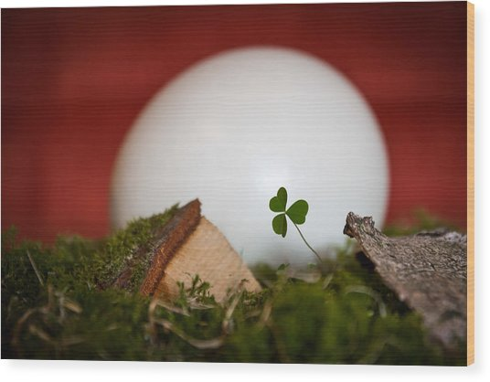 the egg - Happy Easter Wood Print