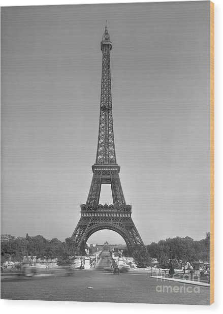 The Eiffel Tower Wood Print