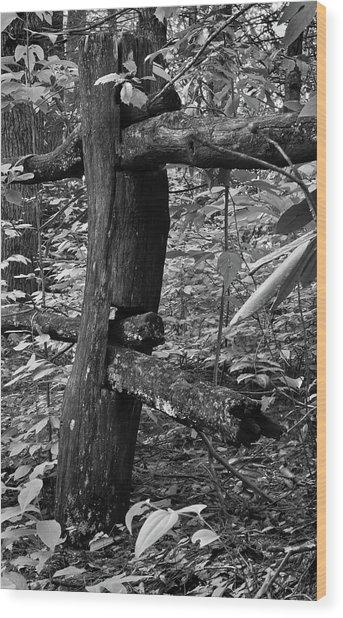 The End Is Near Wood Print by David Waldrop