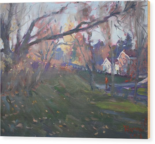 The End Of Autumn Day In Glen Williams On Wood Print